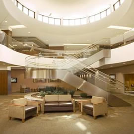 Mayo Clinic 1